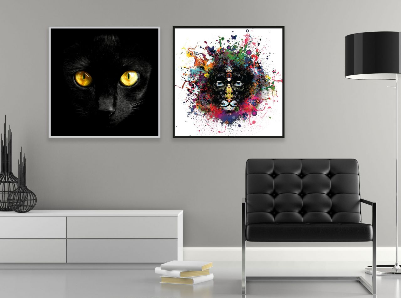 זוג תמונות קנבס חתול ברקע שחור ולבן