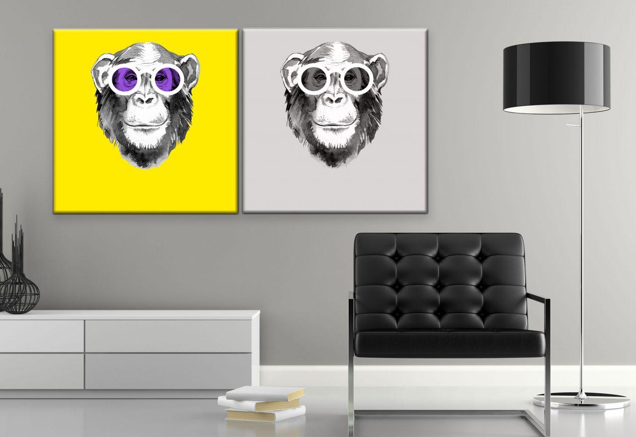 זוג תמונות קנבס ציור של קוף