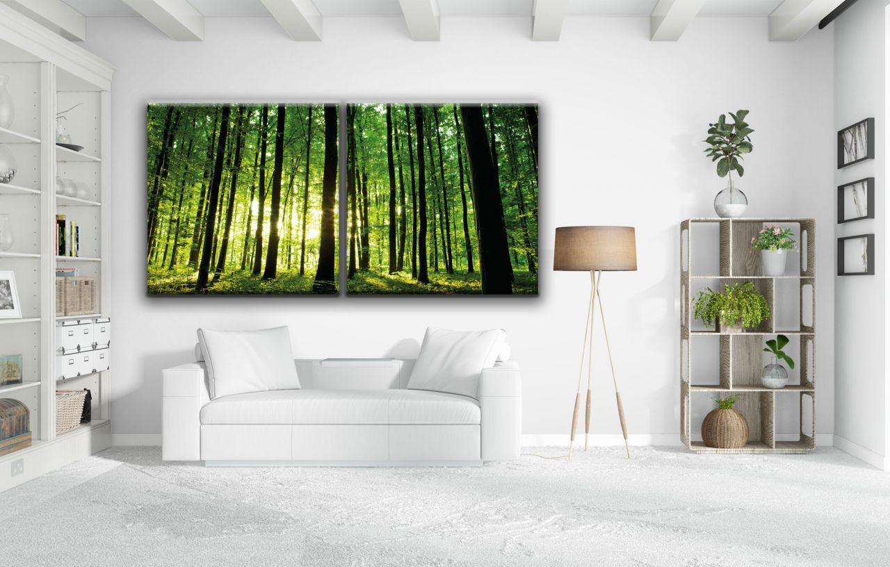 זוג תמונות קנבס יער ירוק