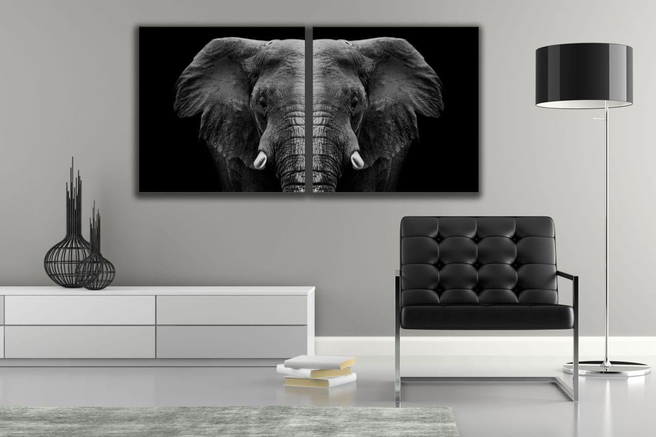 זוג תמונות קנבס שחור לבן של פילים