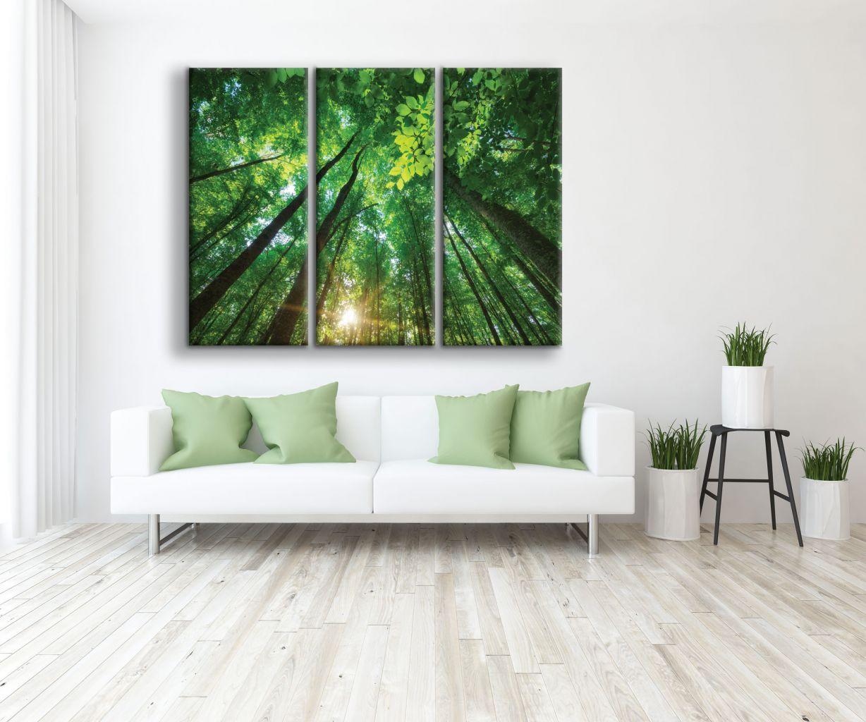 תמונת קנבס לתוך היער מחולקת