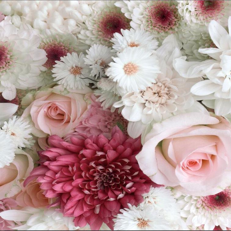 תמונת טפט פרחים לבנים ורודים תלת מימד
