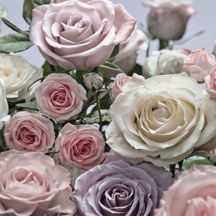 תמונת טפט פרחים בהירים תלת מימד