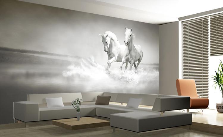 תמונת טפט סוסים לבנים